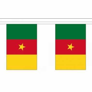 Kameroen vlaggenlijn