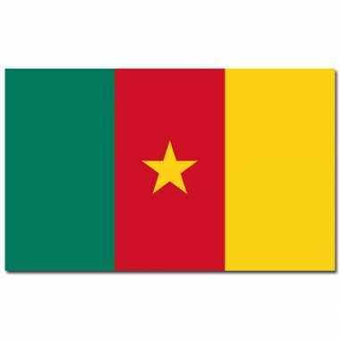 Kameroense vlag