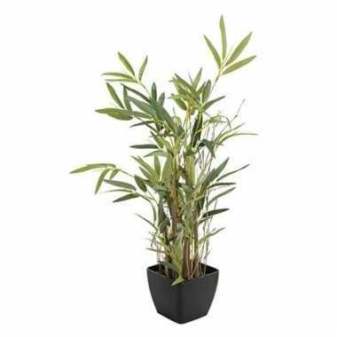 Kantoorplant bamboe in pot 60 cm