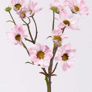 Licht roze margriet 44 cm
