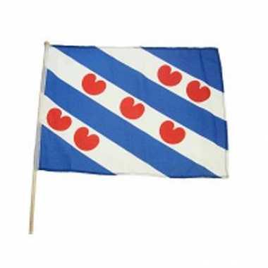Lichtblauwe zwaaivlag friesland