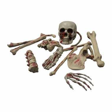 Losse botten van een skelet