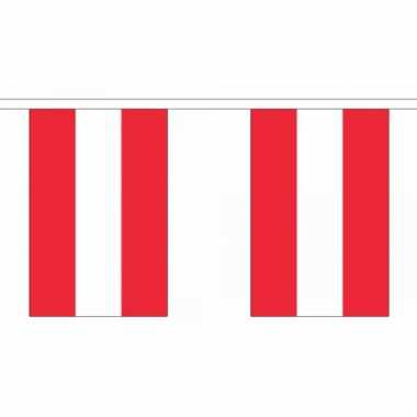 Oostenrijk vlaggenlijn deluxe 9 m