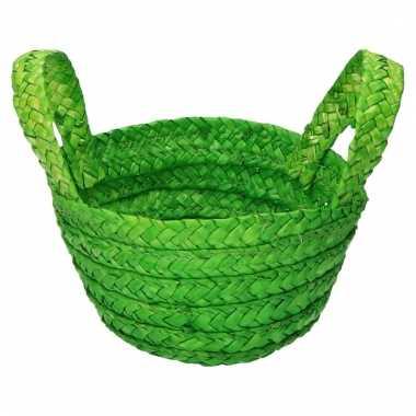 Opbergmand groen voor voorraadkast 15 x 18 cm