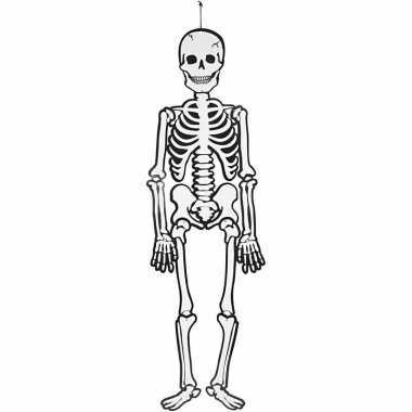 Oplichtende skelet hangdecoratie 120 cm