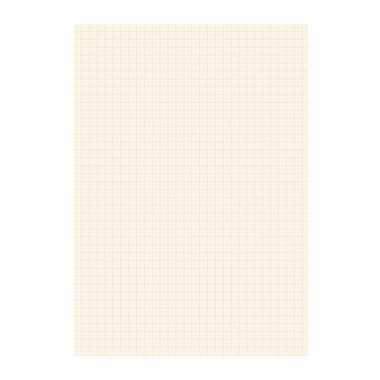 Papier blok 1 millimeter geruit