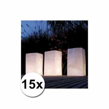 Papieren lichtzakjes 15 stuks