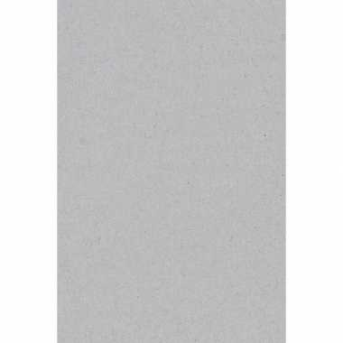 Papieren tafelkleden/tafellakens decoratie zilver grijs 137 x 274 cm