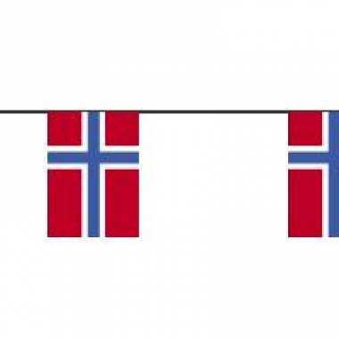 Papieren vlaggenlijnen noorwegen