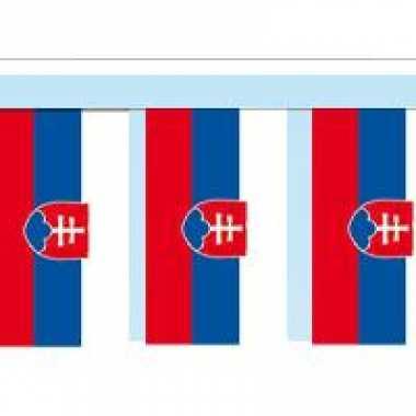 Papieren vlaggenlijnen slowakije