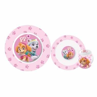 Paw patrol skye en everest lunchservies voor kids
