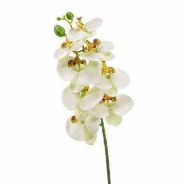 Phaleanopsis vlinderorchidee kunstbloem wit 70 cm