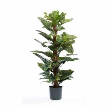 Philodendron nepplant 120 cm