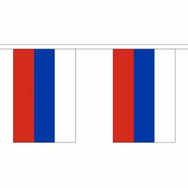 Polyster vlaggenlijn rusland 3 m