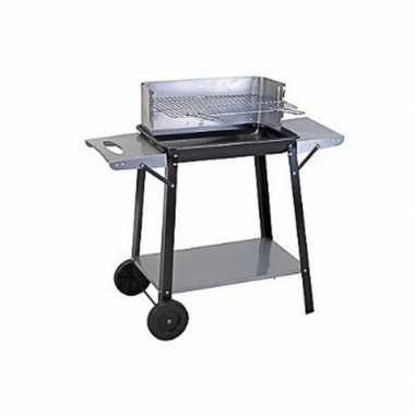 Rechthoekige verrijdbare barbecue