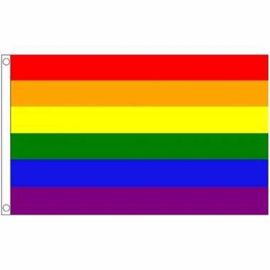 Regenboog lgbt vlaggen 60 x 90 cm