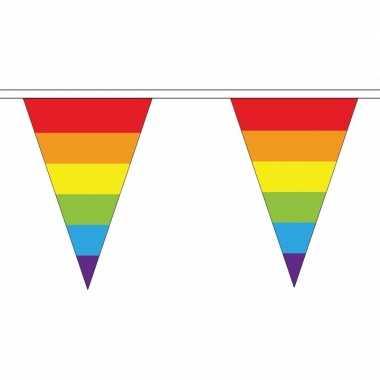 Regenboog versiering vlaggetjes 5 m