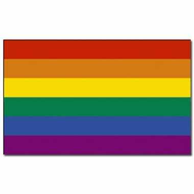 Regenboog vlaggen