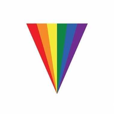 Regenboogvlag vlaggenlijn 5 m