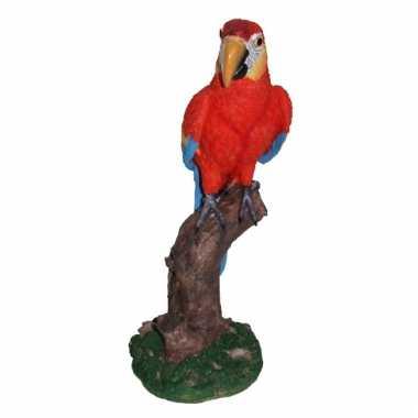 Rood beeldje papegaai 32 cm