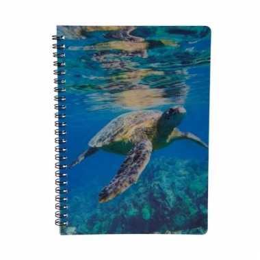 Schildpadden schrijfboekje 3d 21cm