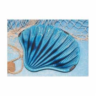 Serveer schaal in vorm van een schelp 25 cm