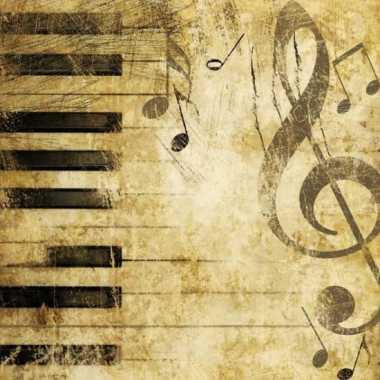 Servetten met piano print 20 stuks