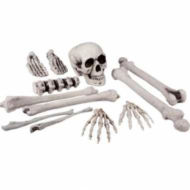 Skelet beenderen in zak 12 stuks