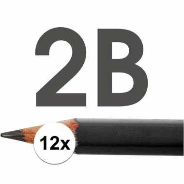 Technisch tekenen potloden hardheid 2b