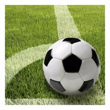 Thema voetbal servetten 33 cm