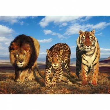 Themafeest dieren poster 61 x 91,5 cm
