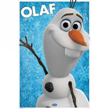 Themafeest olaf poster 61 x 91,5 cm
