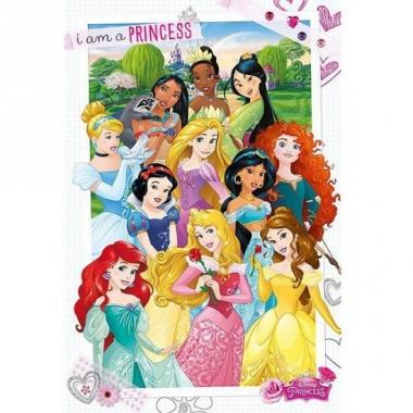 Themafeest prinsessen poster 61 x 91,5 cm