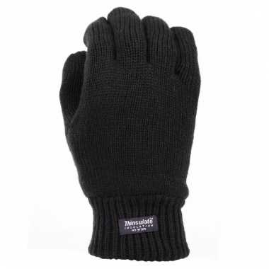 Thermo south pole handschoenen