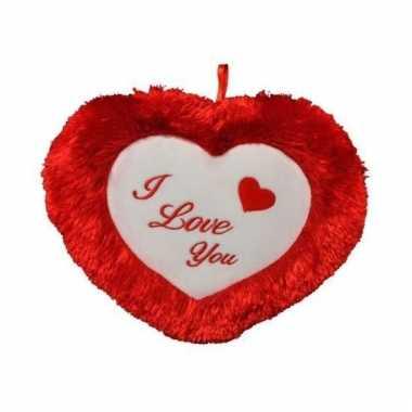 Valentijnsdag pluche i love you kussen kado 45 cm