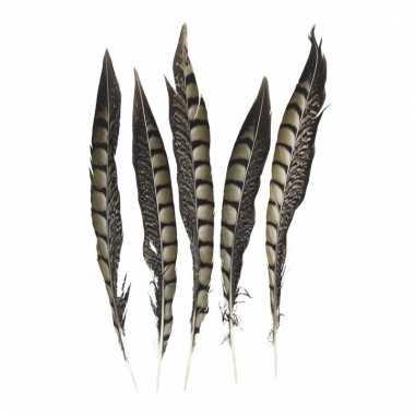 Veertjes lady amherst fazant 28 cm