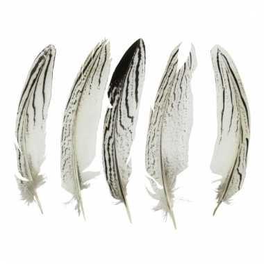 Veertjes zilverfazant 13 cm 5 stuks