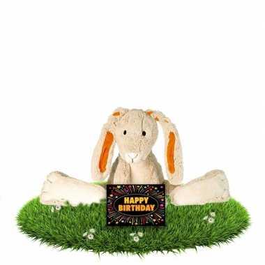 Verjaardag knuffel konijn 22 cm met gratis verjaardagskaart