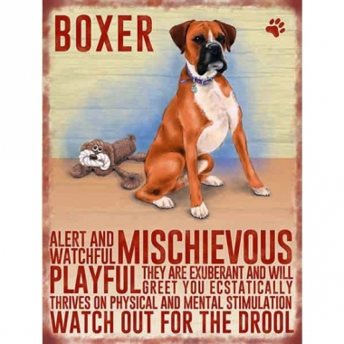 Wand bord boxer 30 x 40 cm