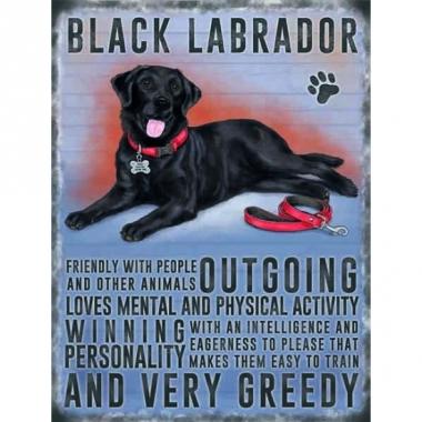 Wand bord zwarte labrador 30 x 40 cm
