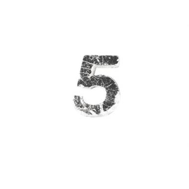 Wax cijfer 5 zilver