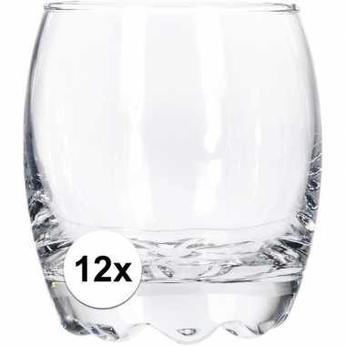 Whiskey glas 12 stuks