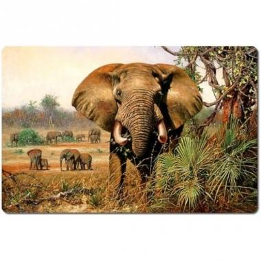 Wilde dieren placemat olifant 3d