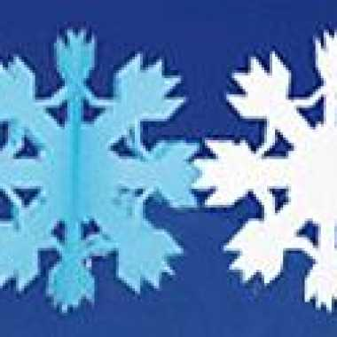 Winter sneeuw thema slinger