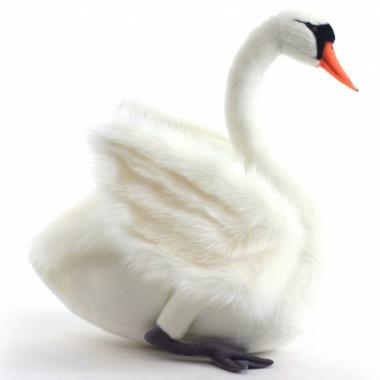 Witte zwaan knuffel 27 cm