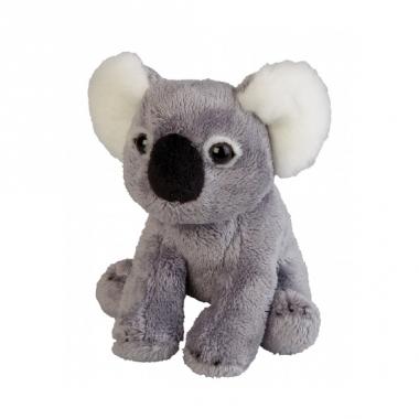 Zachte koala knuffel 15 cm