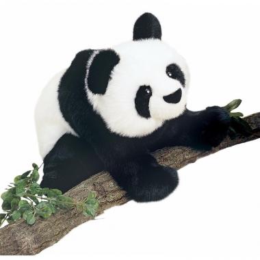 Zachte panda knuffeldier 38 cm
