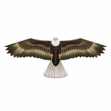 Zeearend vogel verschrikker 76 x 112 cm