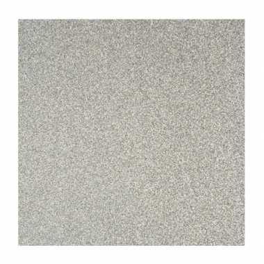 Zilver knutsel papier glitter