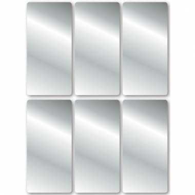 Zilveren etiketten 2,5 x 5,5 cm